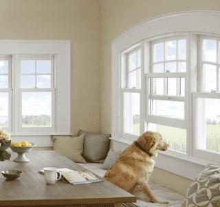 Elk Grove, CA replacement windows